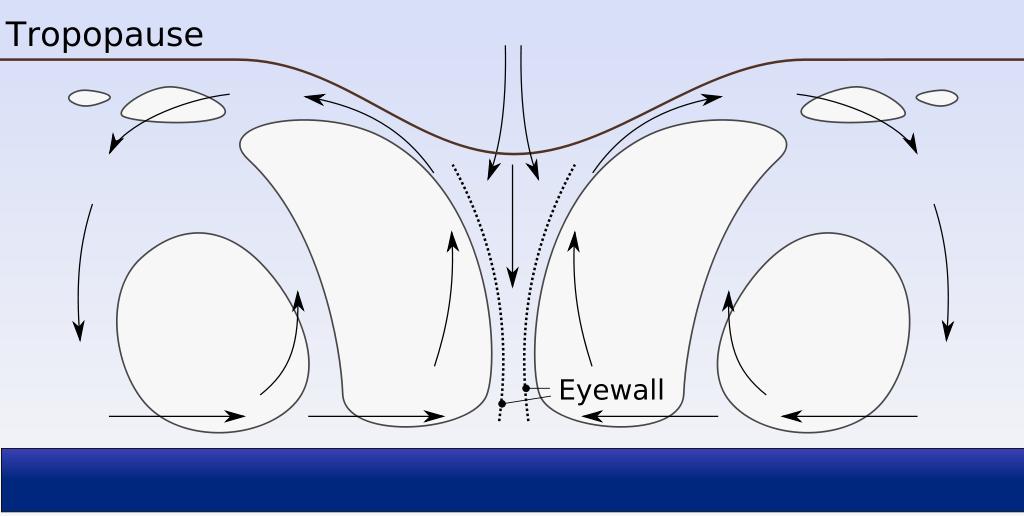 Схема циклона (поперечный разрез)