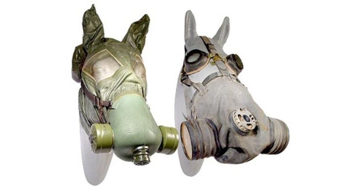 Противогазы для лошадей