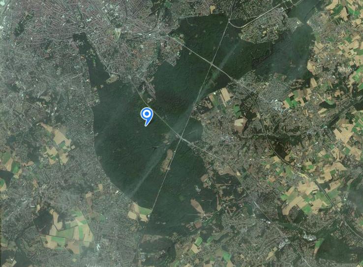 Лес Zoniënwoud. Снимок сделан при помощи картографического сервера Yandex.Maps