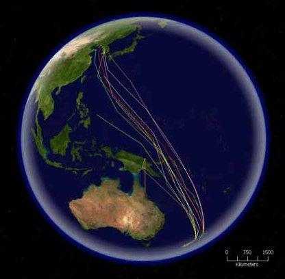 Миграция малого веретенника из Новой Зеландии до континентального Китая