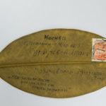 письмо на листе магнолии
