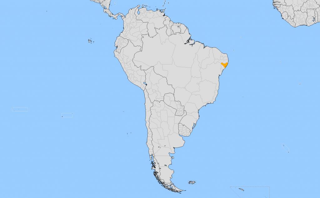 Киломбу Палмарис